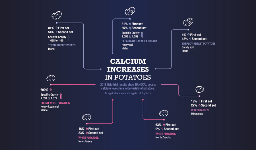 Oro-Agri ENCOURAGE NANOCAL Calcium Uptake in Potatoes